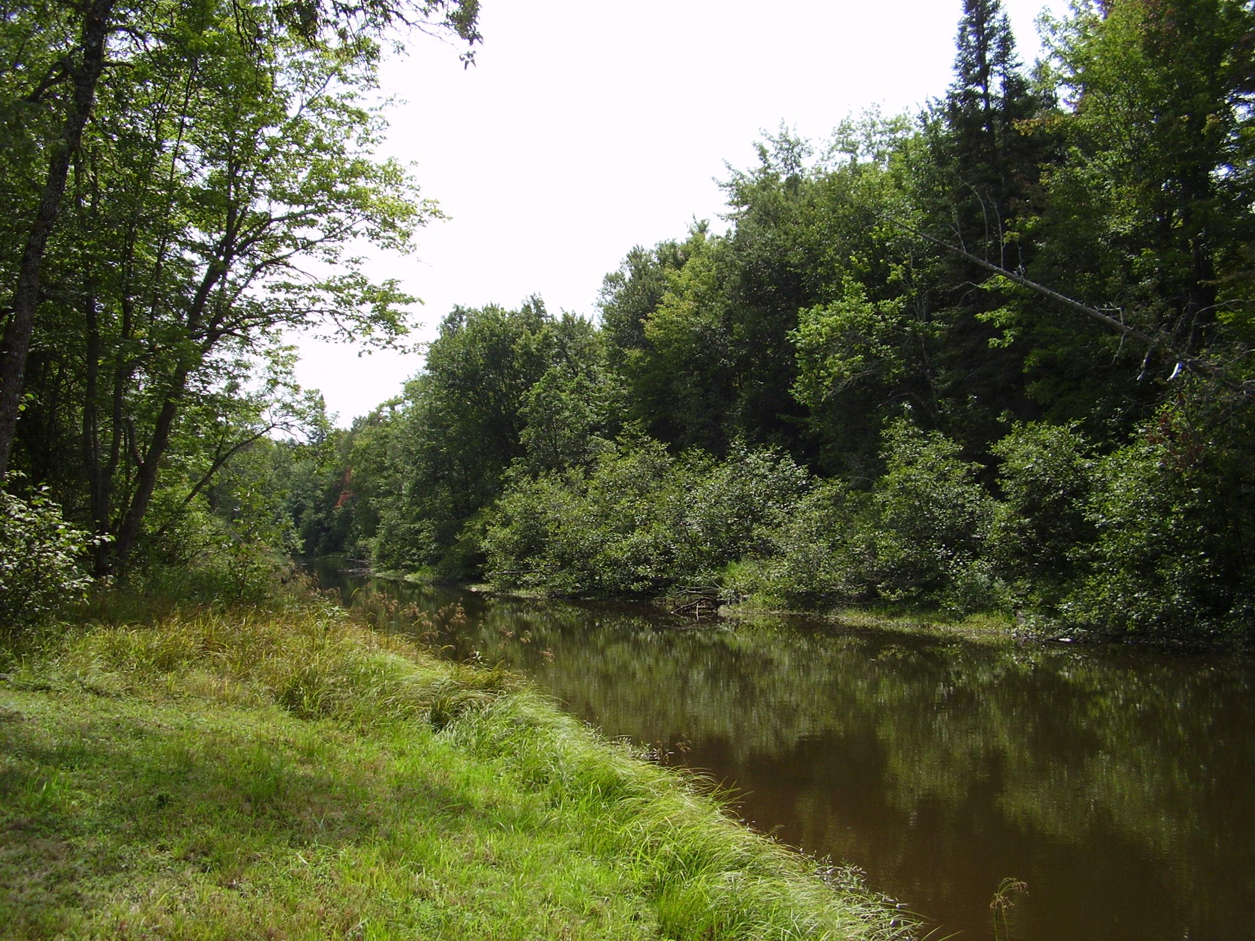 Tahquamenon River - Superior Shores Realty